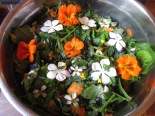 A garden-fresh salad embellished with edible flowers from around our farm.